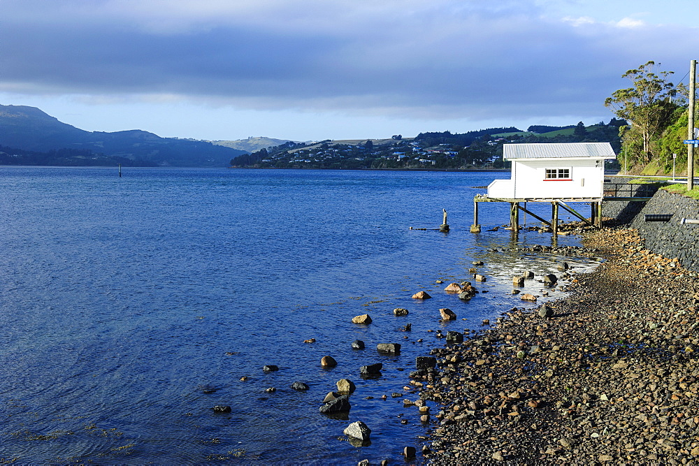 Little fishing cottage on a rocky beach, Otago Peninsula, Otago, South Island, New Zealand, Pacific
