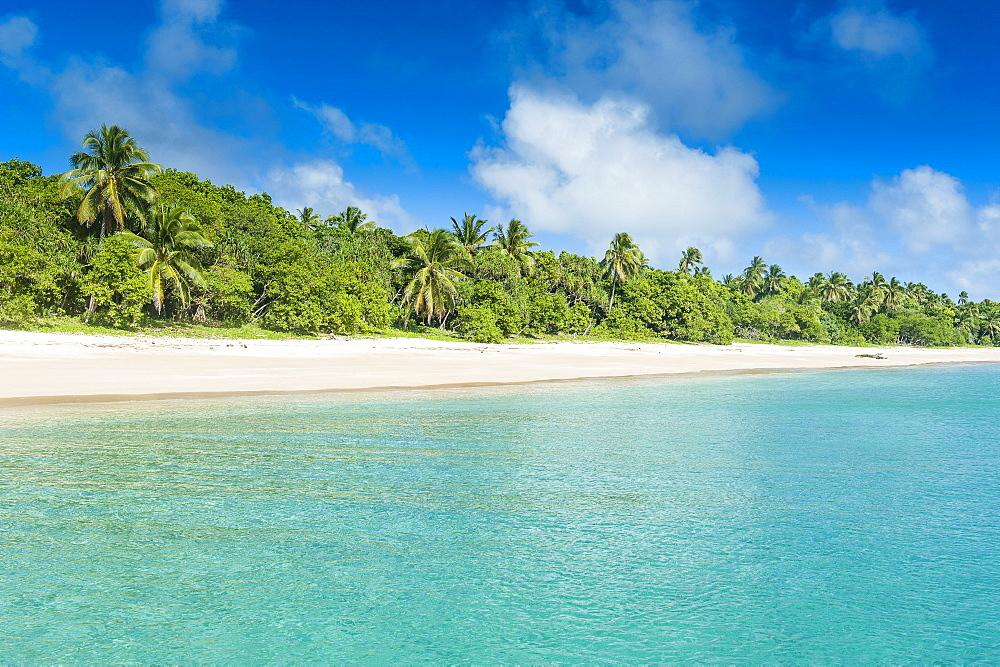 Palm fringed white sand beach in Haapai, Haapai Islands, Tonga, South Pacific, Pacific