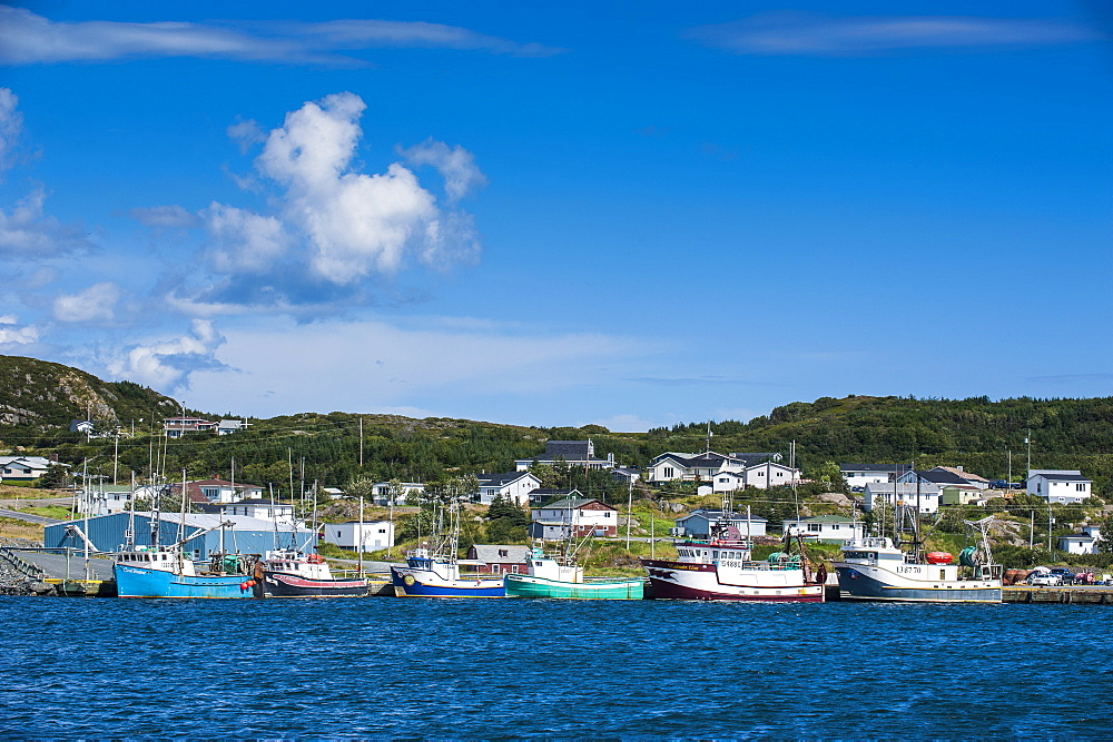 Little fishing boats in Marguerite Bay in St. Anthony, Newfoundland, Canada, North America