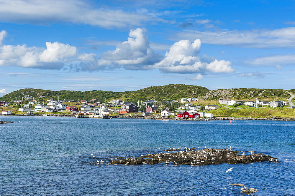 Marguerite Bay in St. Anthony, Newfoundland, Canada, North America