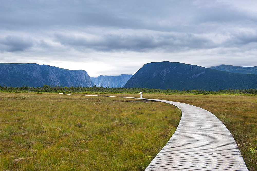 Walkway along Jerrys Pond in the Gros Morne National Park, UNESCO World Heritage Site, Newfoundland, Canada, North America