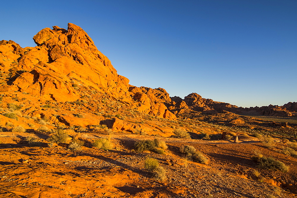Redrock Sandstone formations at sunrise in the Valley of Fire State Park, Nevada, United States of America, North America