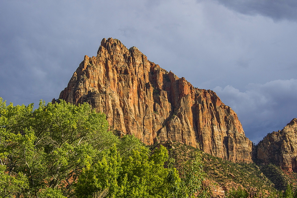 Late sunlight glowing on the rocks of the Zion National Park, Utah, United States of America, North America