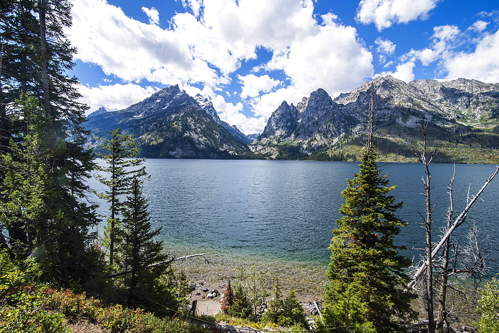 Jenny Lake in front of the Teton range in the Grand Teton National Park, Wyoming, United States of America, North America