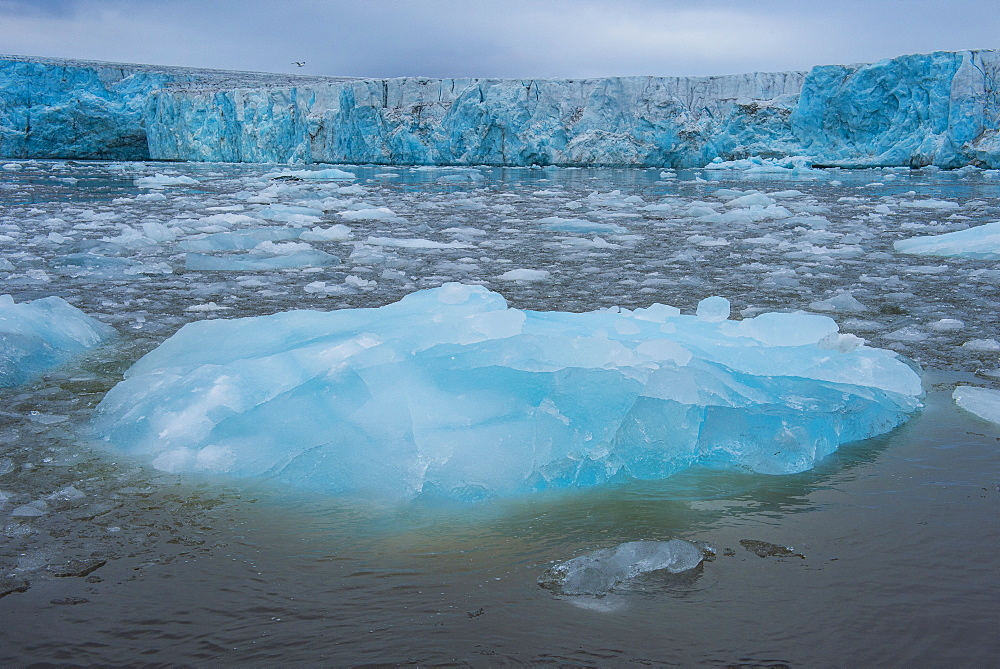 Shining blue glacier ice, Hornsund, Svalbard, Arctic, Norway, Scandinavia, Europe