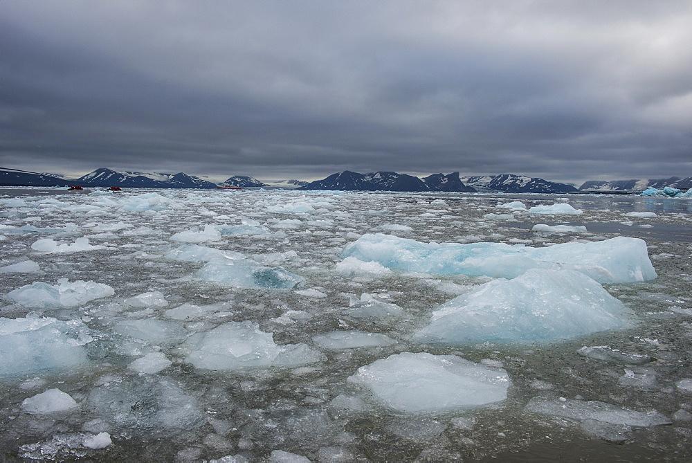 Drifting glacier ice, Hornsund, Svalbard, Arctic, Norway, Scandinavia, Europe