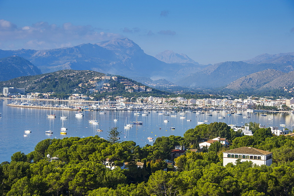 View over the bay of Port de Pollenca with many sailing boats, Mallorca, Balearic Islands, Spain, Mediterranean, Europe
