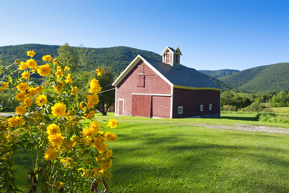 Little farm in the mountains in Dorset, Vermont, New England, United States of America, North America