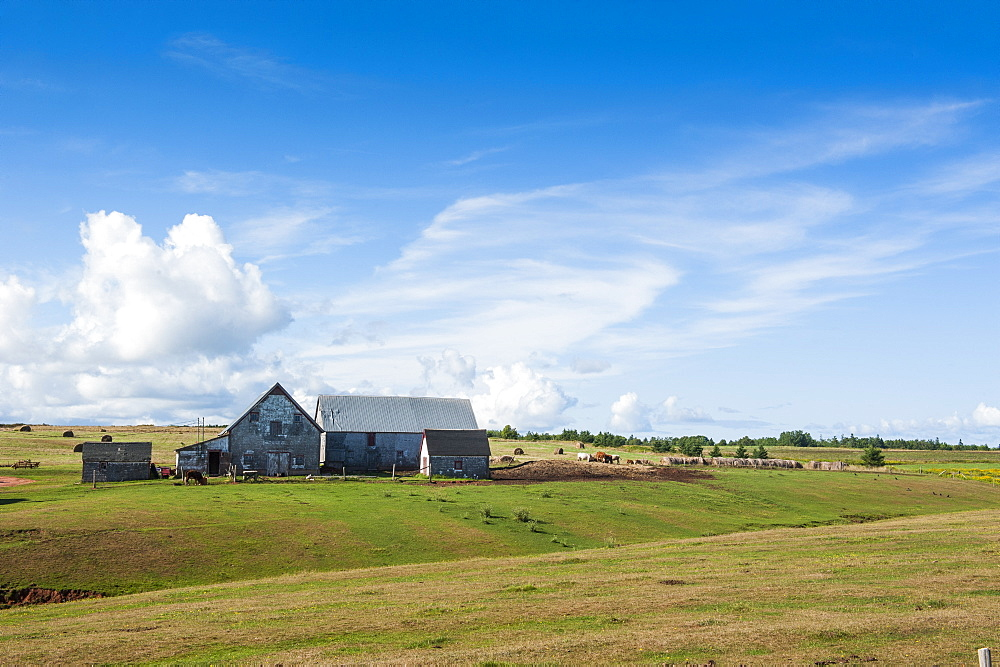 Little farm in the rolling fields of Prince Edward Island, Canada, North America