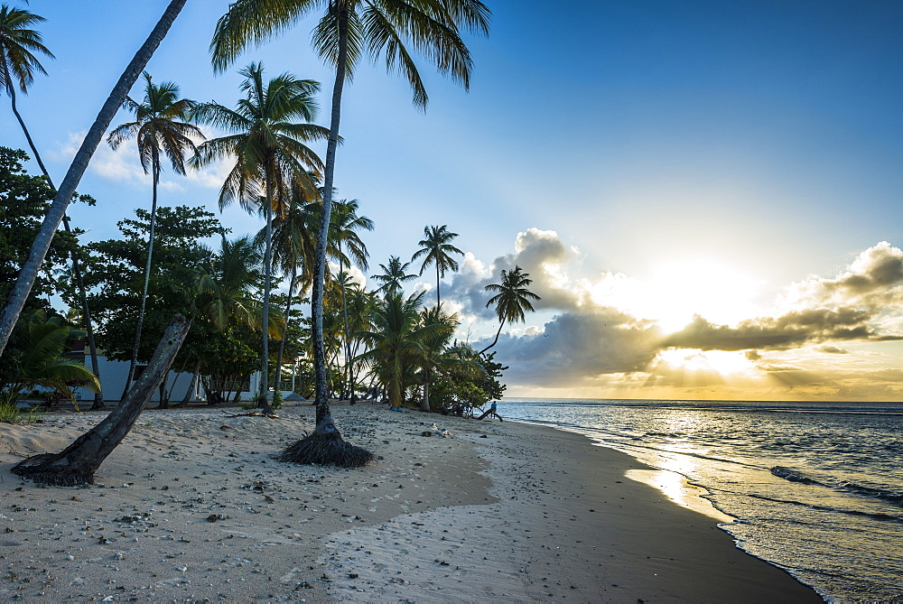 Sunset at the beach of Pigeon Point, Tobago, Trinidad and Tobago, West Indies, Caribbean, Central America