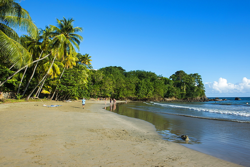 Bacolet Beach, Tobago, Trinidad and Tobago, West Indies, Caribbean, Central America