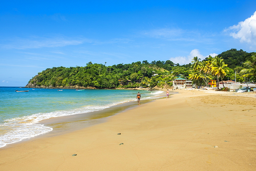 Beach of Castara,Tobago, Trinidad and Tobago, West Indies, Caribbean, Central America