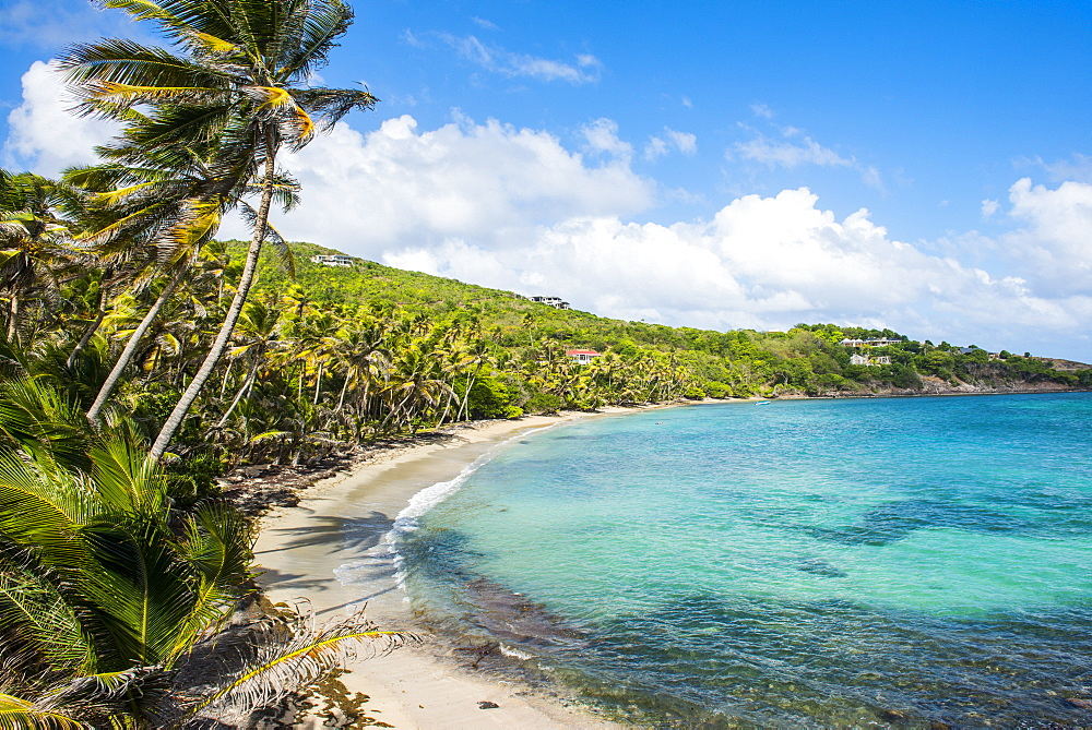 Sandy beach on Industry Bay, Bequia, The Grenadines, St. Vincent and the Grenadines, Windward Islands, West Indies, Caribbean, Central America