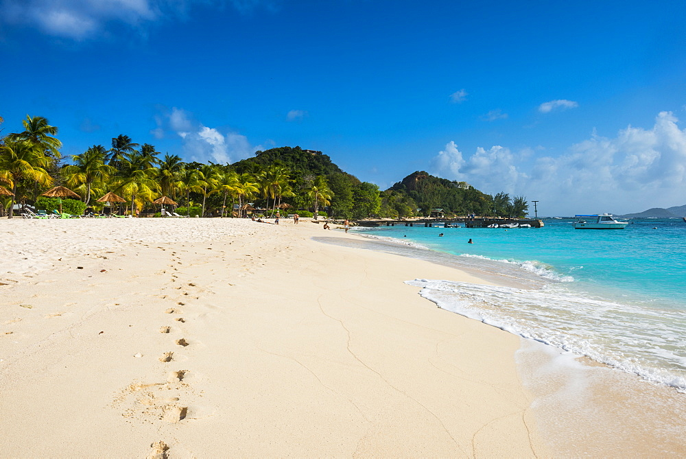 Palm fringed white sand beach on Palm Island, The Grenadines, St. Vincent and the Grenadines, Windward Islands, West Indies, Caribbean, Central America