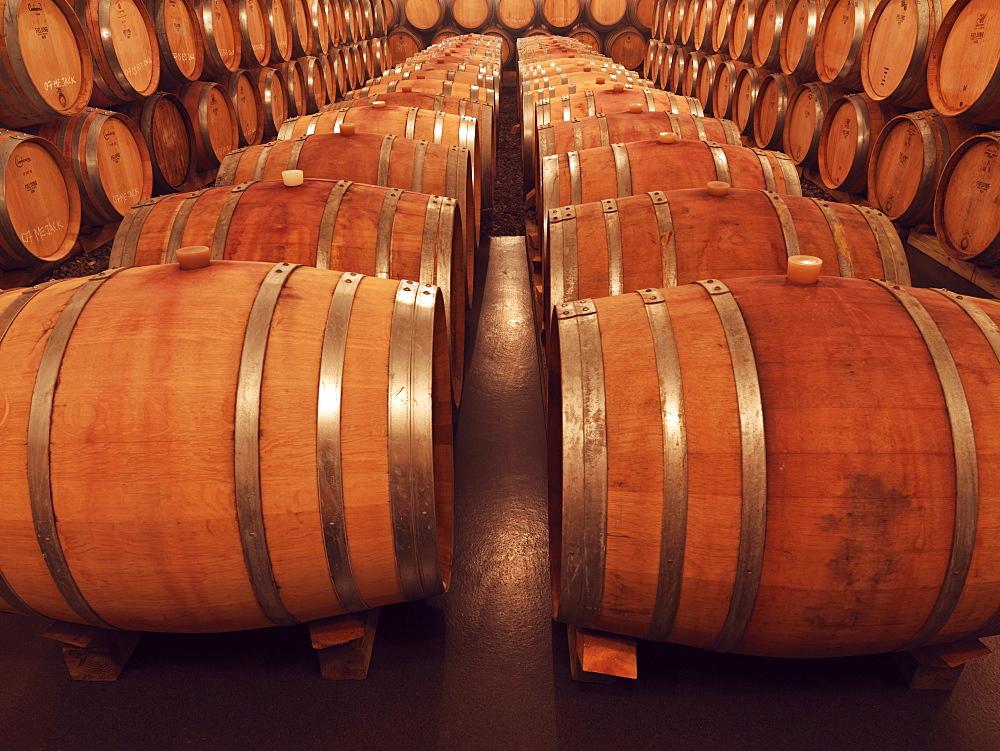 Oak barrels in wine cellar at Fielding Estate Winery, Beamsville, Ontario, Canada, North America