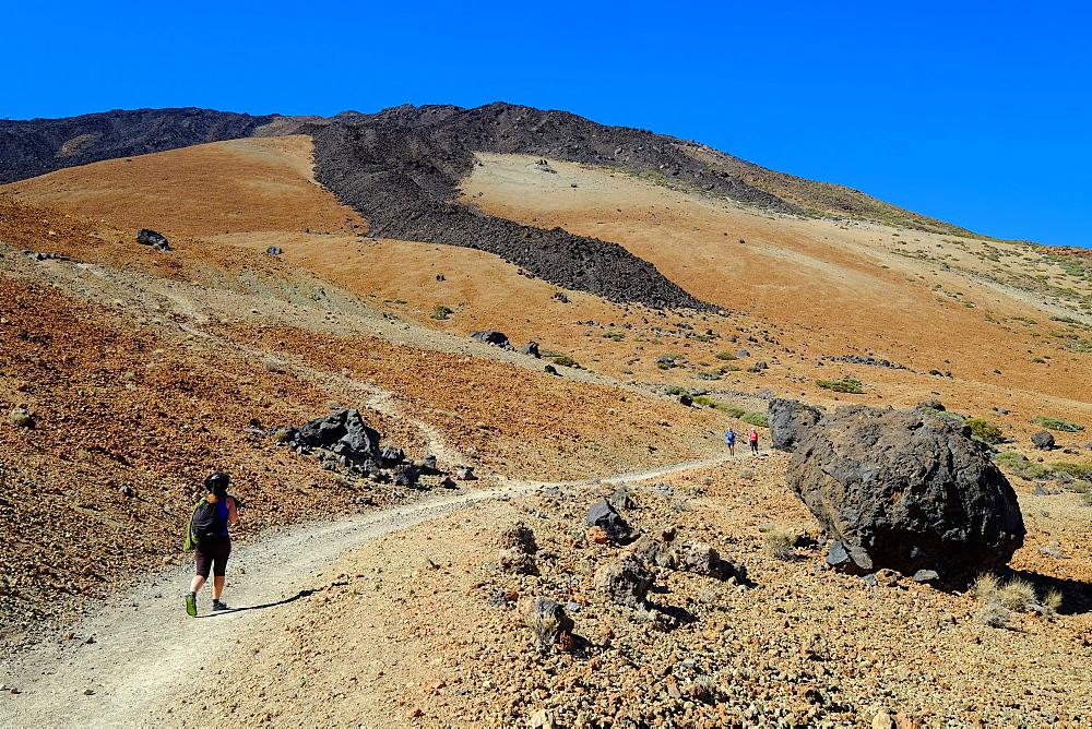 Teide National Park, Tenerife, Canary Islands, Spain, Europe