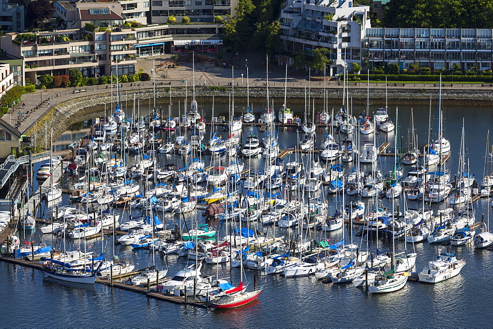 Aerial view, marina, False Creek, Vancouver, British Columbia, Canada, North America - 821-254