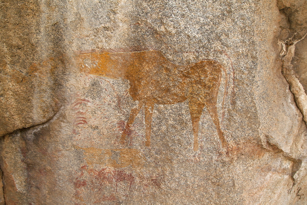 Ancient rock art of a painting depicting an animal, at Matobo National Park, Zimbabwe, Africa - 826-696