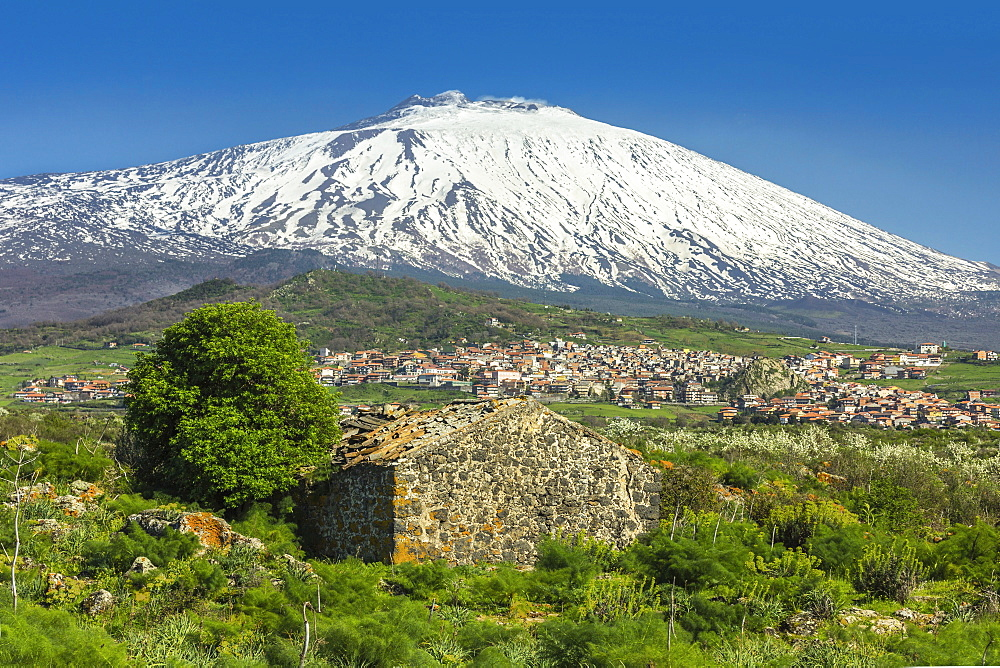 The 3350m snow-capped volcano Mount Etna, UNESCO World Heritage Site, looms over the Maletto town on its western flank, Maletto, Catania Province, Sicily, Italy, Europe