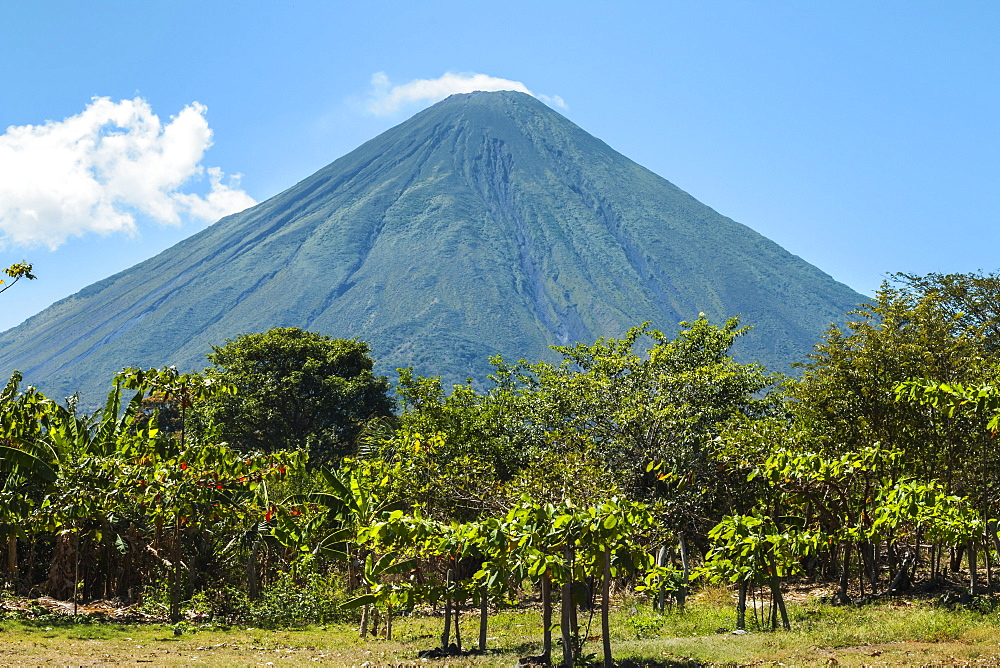 The forested side of the 1610m active Volcan Concepcion seen from the east of the island, Isla Omotepe, Lake Nicaragua, Nicaragua, Central America