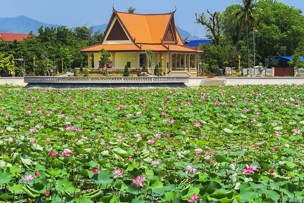 Ornamental lake covered with lily pads by temple pavilion at this quiet former French resort town, Kep, Kep Province, Cambodia