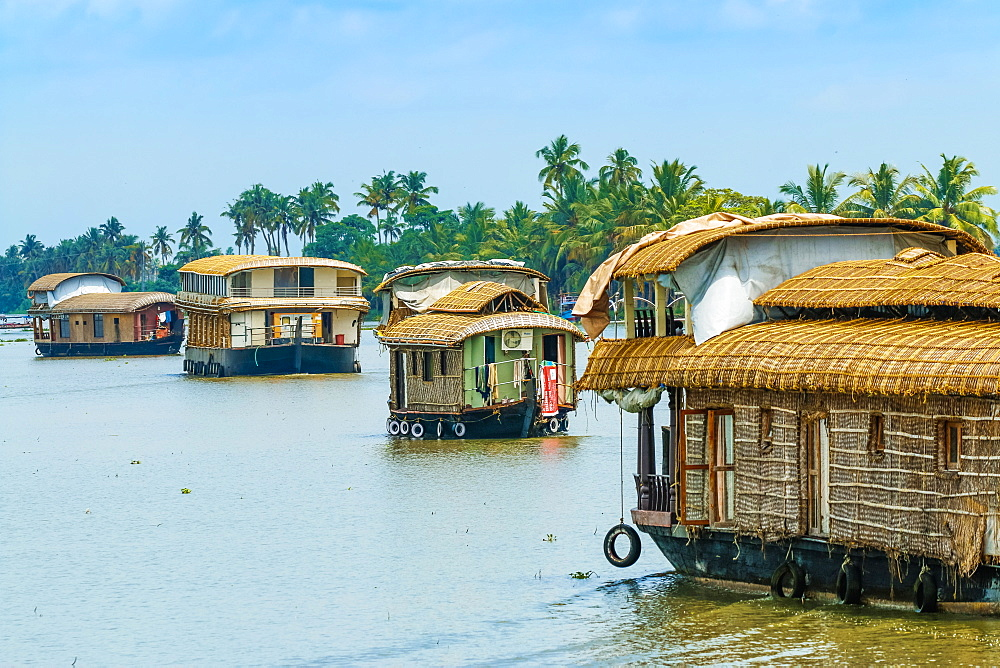 Kerala houseboats cruising Lake Vembanad, longest lake in India, during a backwater tour; Alappuzha (Alleppey), Kerala, India
