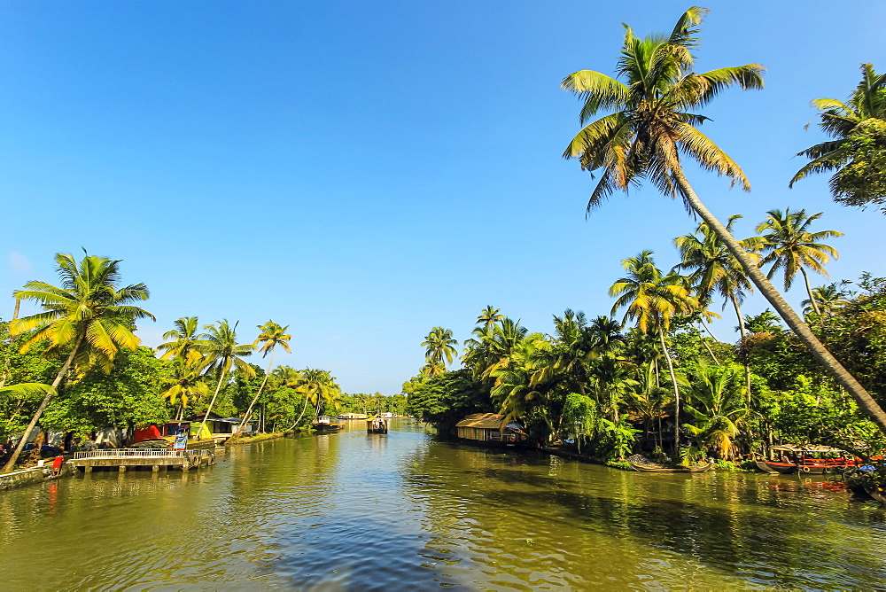 The palm fringed backwaters that attract the popular tourist houseboat cruises here; Alappuzha (Alleppey), Kerala, India