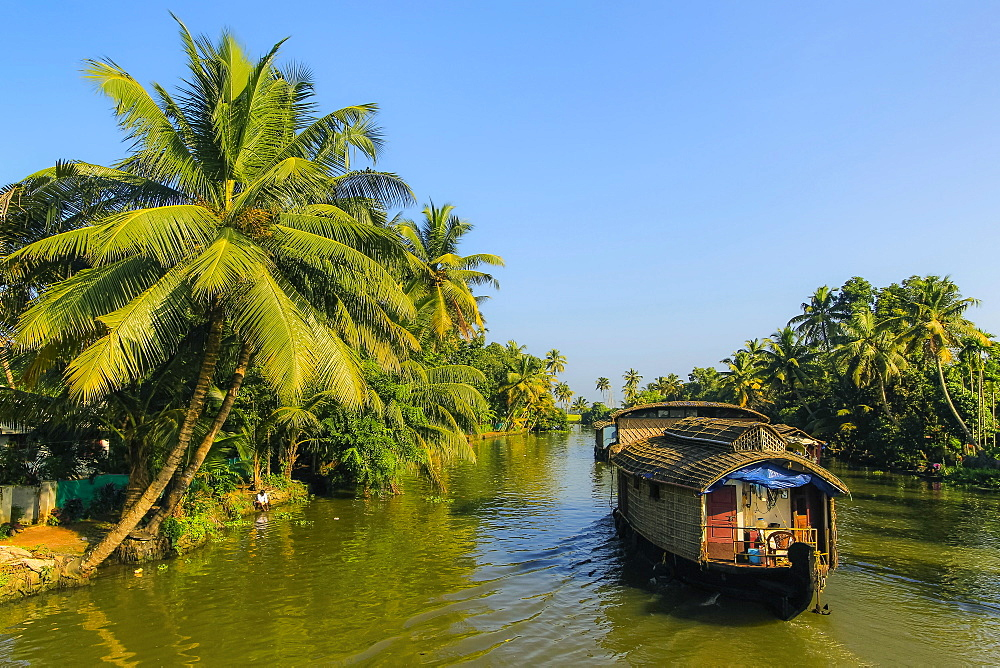 Kerala houseboat cruising the palm fringed backwaters on a typical tourist cruise here; Alappuzha (Alleppey), Kerala, India
