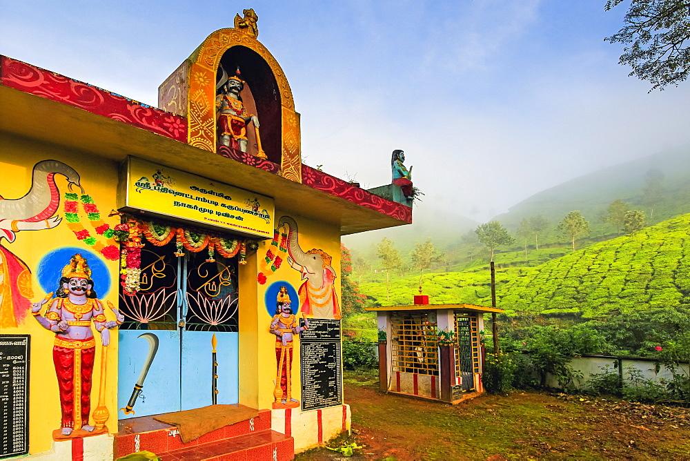 Lakshmi tea estate temple devoted to Aravan of the Tamil Kuttantavar Cult, many tea workers are Tamil, Munnar, Kerala, India, Asia