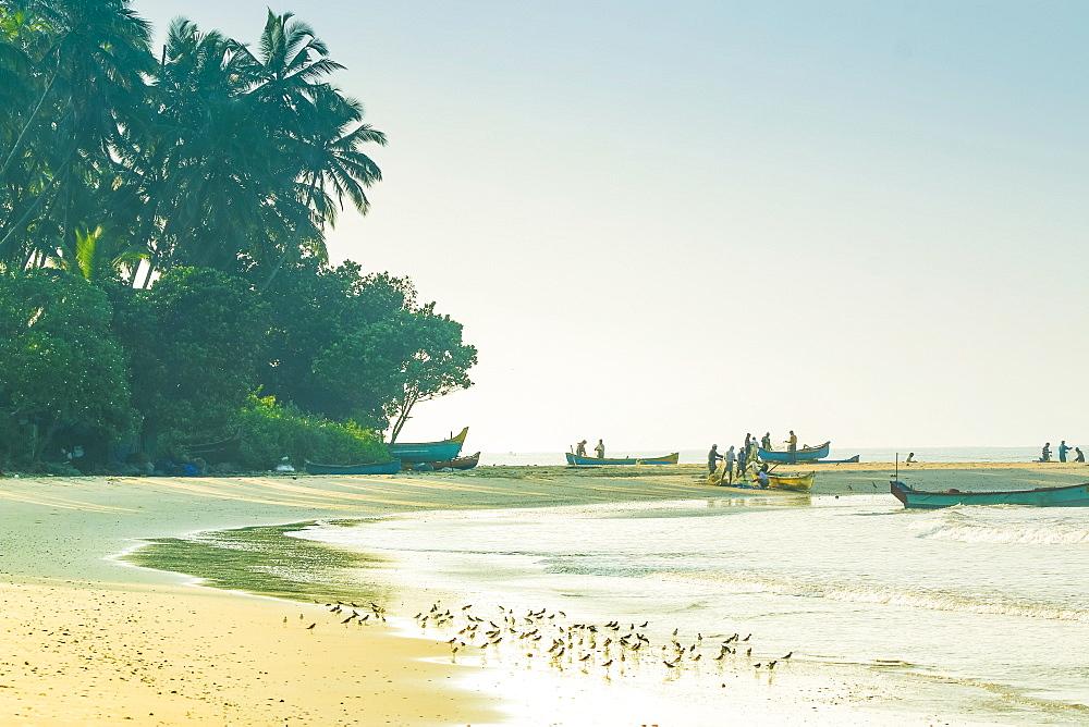 Fishermen and wading birds at beautiful Kizhunna Beach, south of Kannur on the Kerala north coast, Kizhunna, Kannur, Kerala, India, Asia