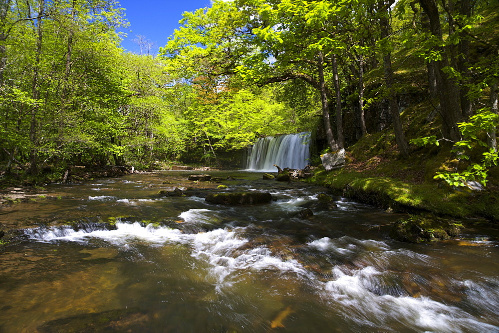 Sgwd Ddwli Uchaf, waterfall on Afon Nedd Fechan, near Ystradfellte, Brecon Beacons, National Park, Wales, United Kingdom, Europe - 831-1482