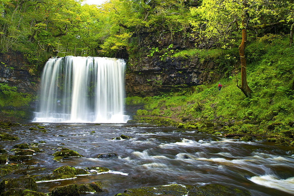 Sgwd Ddwli Uchaf waterfall, Ystradfellte, Brecon Beacons National Park, Powys, Wales, United Kingdom, Europe - 831-1491