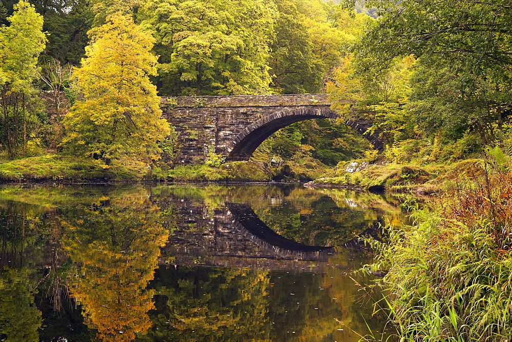 Bridge over River Conwy in autumn, near Betwys-y-Coed, Wales, United Kingdom, Europe - 831-1502