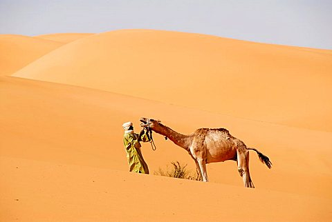 Protest Tuareg tries to hold a camel in the desert Mandara Libya