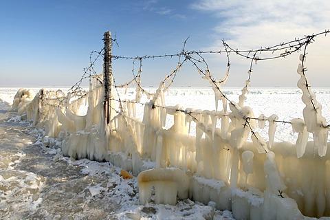 Icy barbed wire, frozen Black Sea, a rare phenomenon, occured in 1977 for the last time, Odessa, Ukraine, Eastern Europe - 832-375012