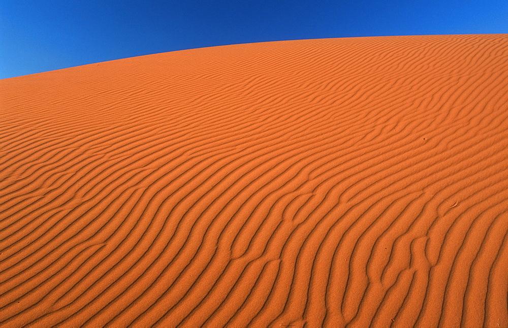 Sand Dune, Strzelecki Desert, South Australia