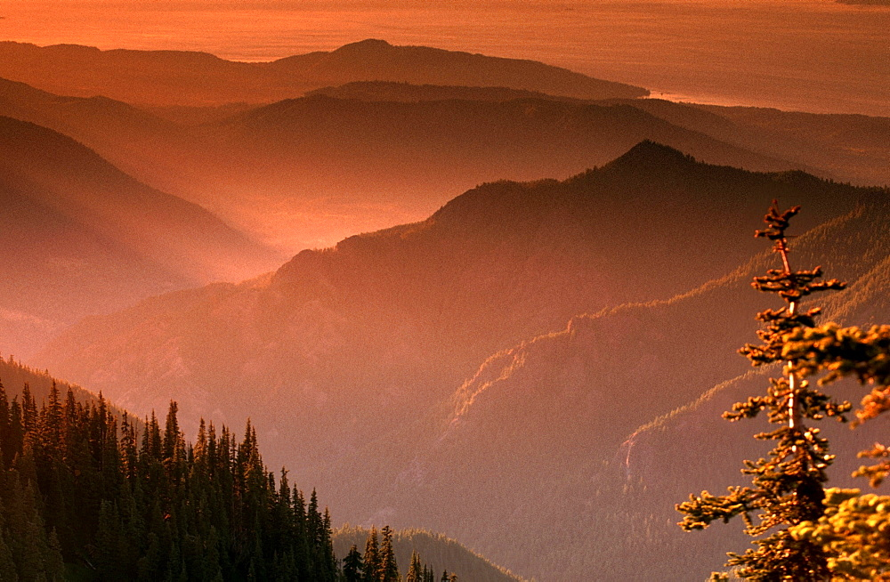 Appalachian Mountains at sunset, view from Clingman Dome, Great Smoky Mountains national park, North Carolina, USA