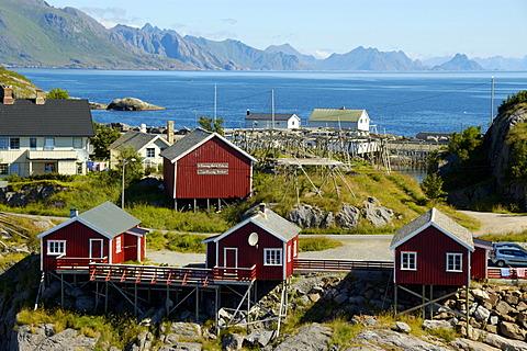 Scattered red wooden houses Hamnoya Moskenesoya Lofoten Norway