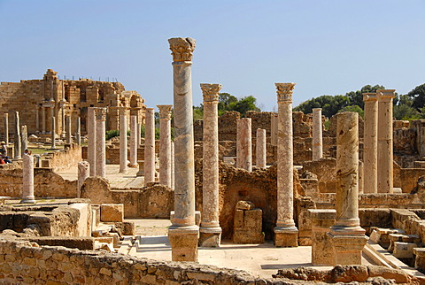 Many antique pillars Hadrians thermal baths Leptis Magna Libya