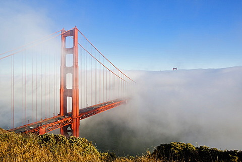 Golden Gate Bridge in the fog, San Francisco, California, USA, America