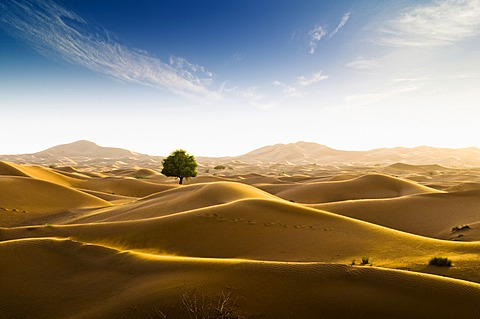 Rub' al Khali desert on the border of Oman and the Emirate of Dubai, Middle East, Southwest Asia