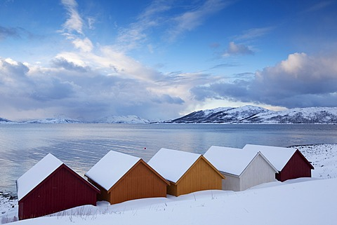 Nordfjord with colorful wooden huts, Kval√∏ya, Norway, Europe
