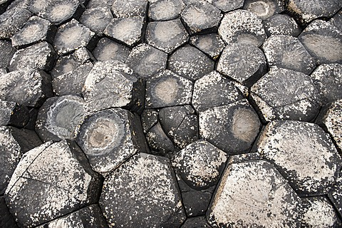 Basaltic rocks, hexagons seen from above, Giant's Causeway, Coleraine, Northern Ireland, United Kingdom, Europe