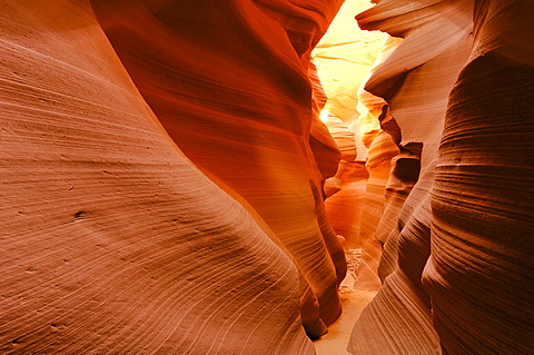 Sandstone formations, Lower Antelope Canyon, Slot Canyon, Arizona, USA, North America