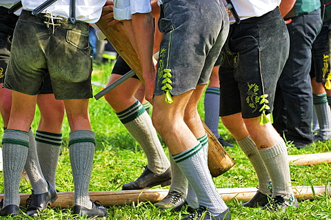 Men with leather trousers putting up a maypole, detail, Egmating, Upper Bavaria, Bavaria, Germany