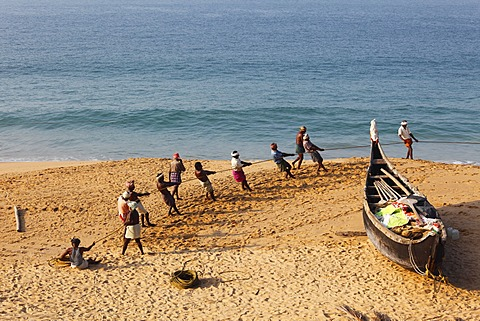 Fishermen pulling in a net, beach south of Kovalam, Malabar Coast, Malabar, Kerala, southern India, India, Asia