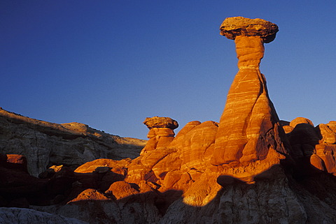 Toadstool Hoodoo at sunset Grand Staircase Escalante National Monument Utah USA