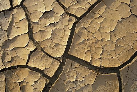 Cracked earth in dry creek Joshua Tree National Park California USA