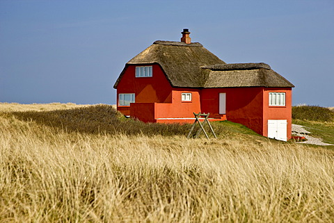 Lonely red house at the Danish west coast, Denmark