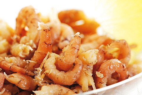 North Sea prawns - 832-376826